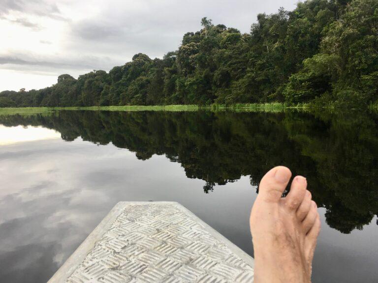 Amazonas 2018